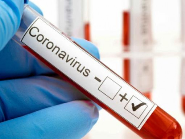 علاج فيروس كورونا | فيروس هانتا القاتل HANTAVIRUS فيروس هنتا يقتل مواطن صيني ومخاوف من انتشاره