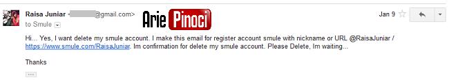 Delete Akun Smule - Balas Email Smule