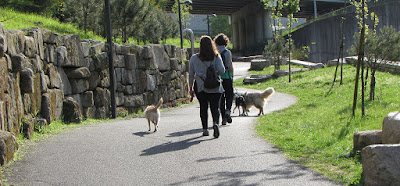 Senhoras passeando os cães no Parque Oriental do Porto