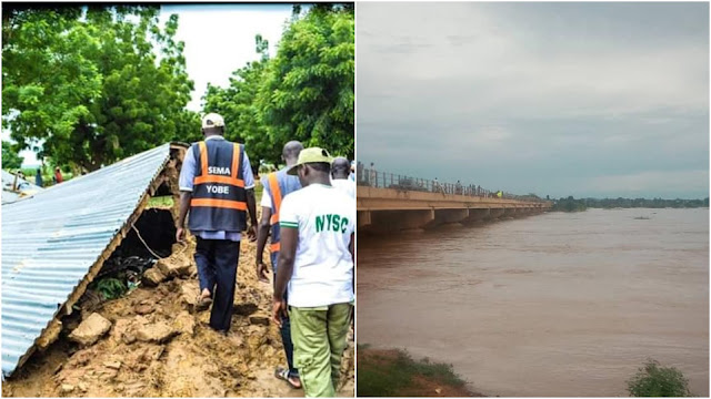 Flood submerges over 300 houses, destroys farmlands, foodstuff in Yobe