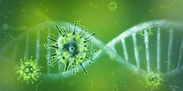 Virus Corona, Bagaimana Nasib Mahasiswa Lombok Timur yang Sedang Kuliah di China?