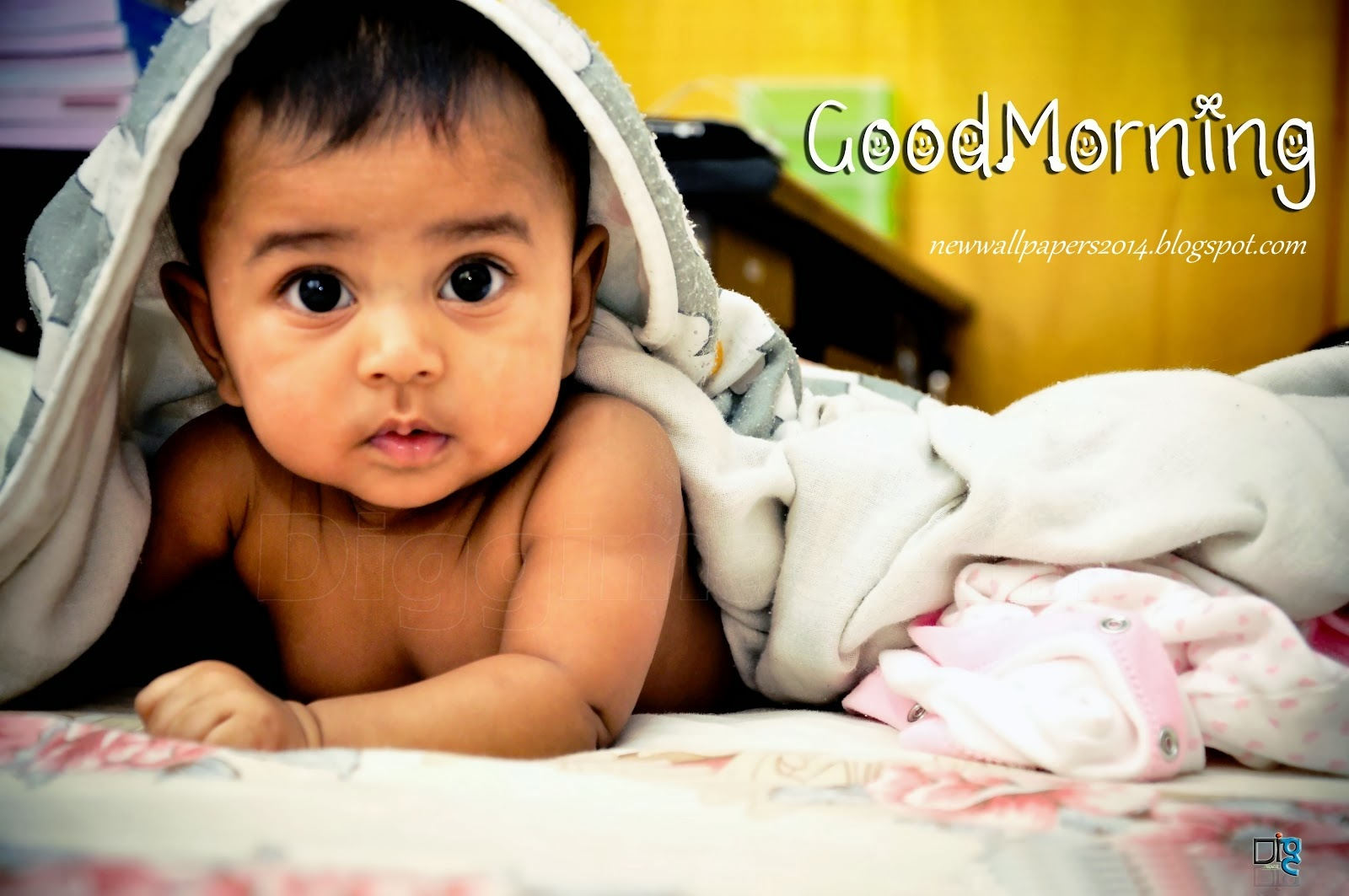 Download Free Small Cute Babies Wallpapers The Quotes Land: Good Morning HD Wallpapers