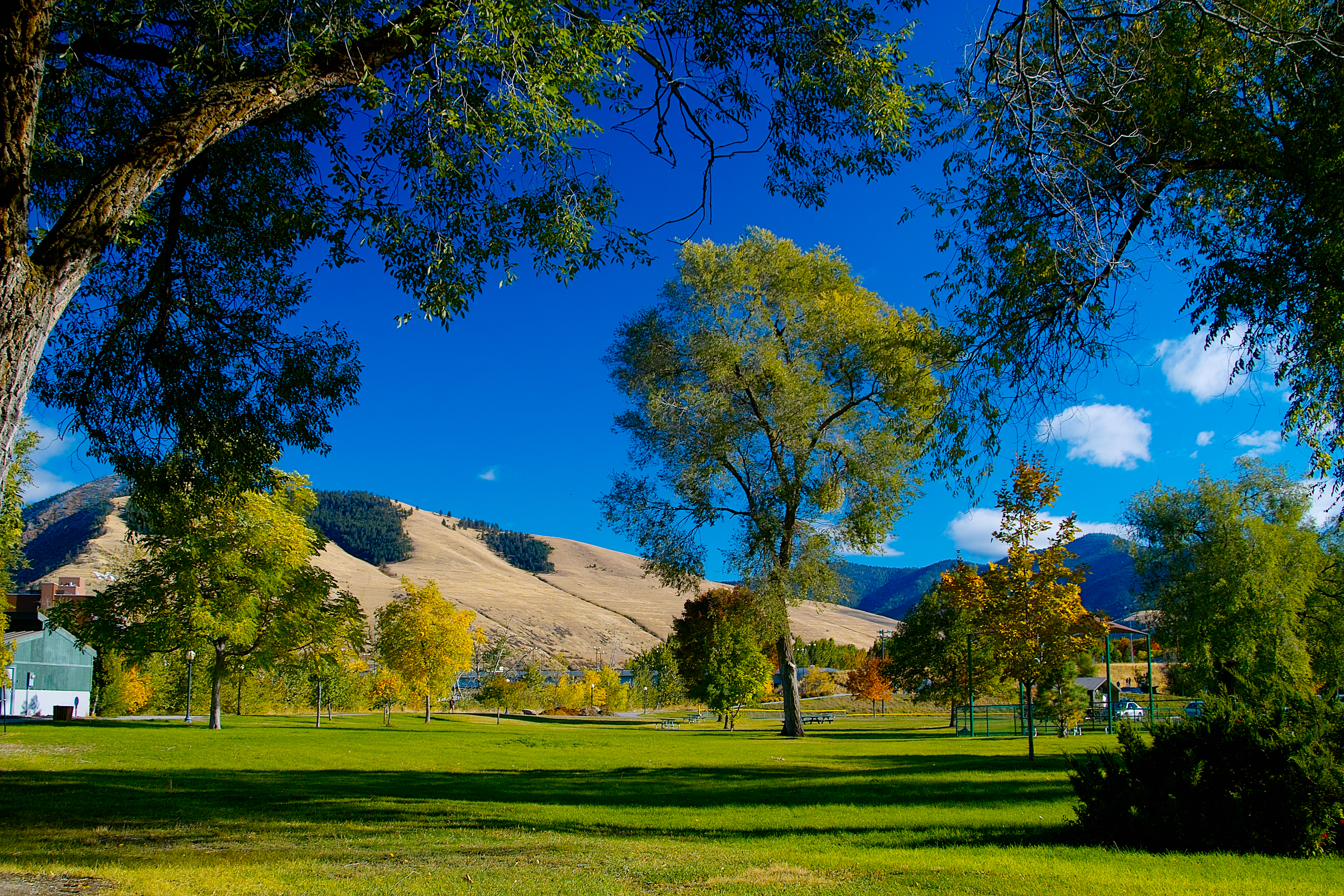 picture of a park in Missoula, Montana