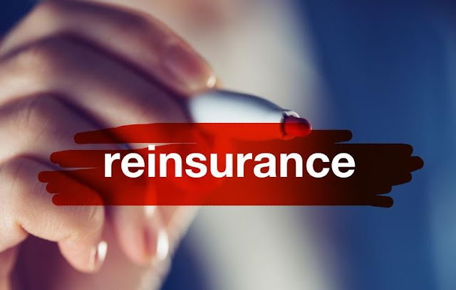 what is reinsurance business insurance policy coverage