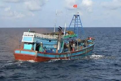 Selain Impor 40% Ikan Beku, RI Juga Impor 49% Cumi dari China