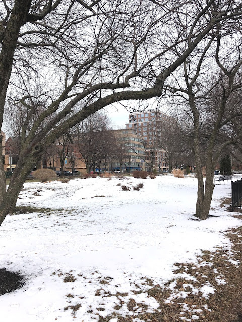 The snow covered Emerald Garden provides a refreshing green space in warmer months.