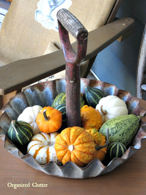 Photo of gourds and mini pumpkins in a rustic farm tray.