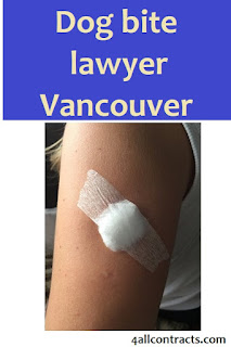 dog bite lawyer vancouver, dog bite lawyer vancouver, dog bite lawyer vancouver, dog bite lawyer washington, best dog bite lawyer,