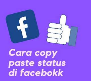 2 Cara Mengcopy Paste Status Di Facebook Atau FB Lite