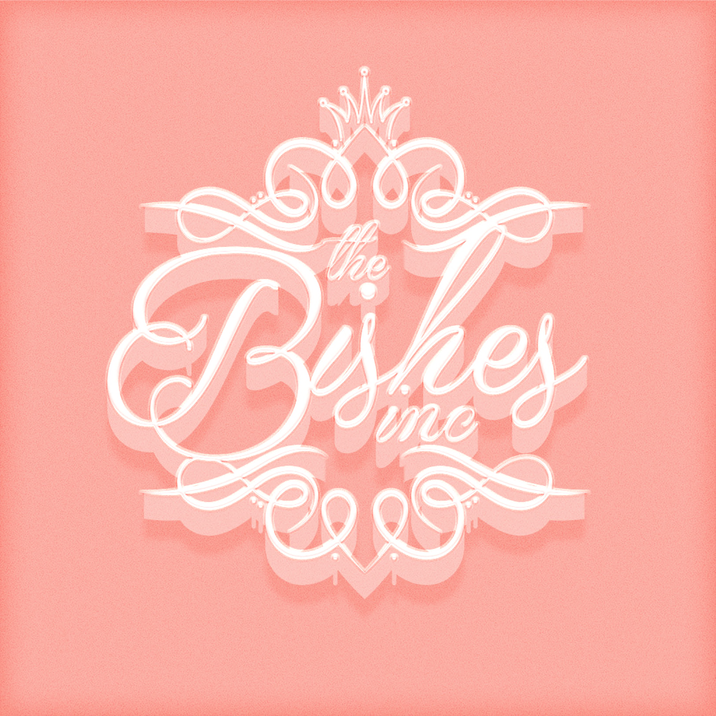 Blogger for Bishes Inc