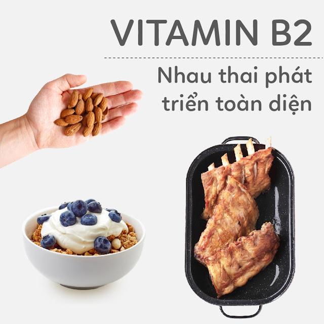 Hướng dẫn Mẹ Bầu bổ sung Vitamin B2 - Nhau thai phát triển toàn diện
