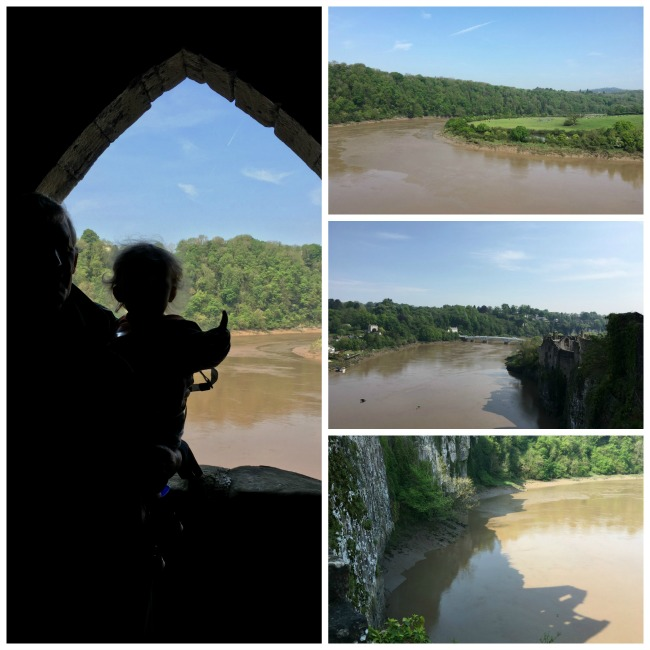 collage of river views.