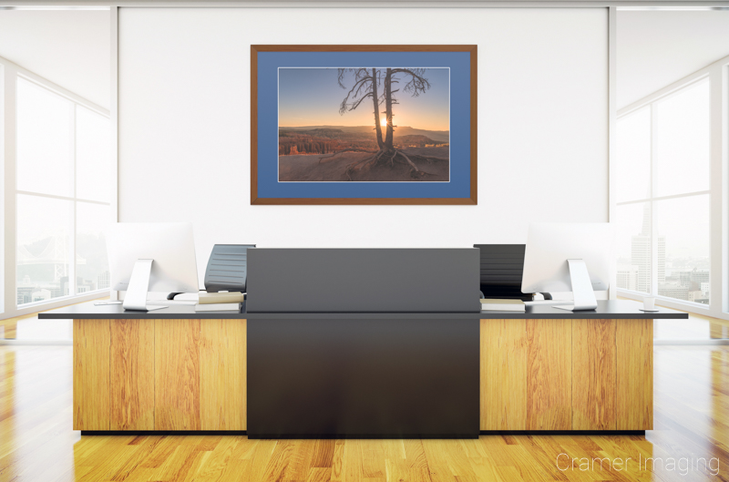 Cramer Imaging's staged photo of 'Sun Dance' on the wall of a front office space