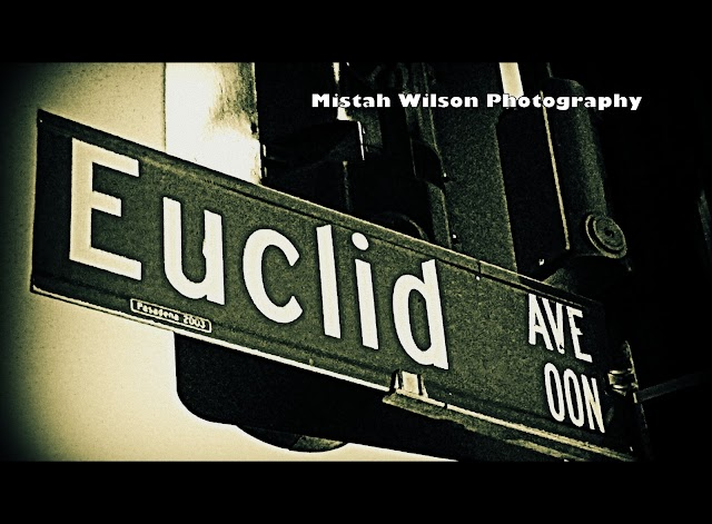 Euclid Avenue, Pasadena, California by Mistah Wilson Photography