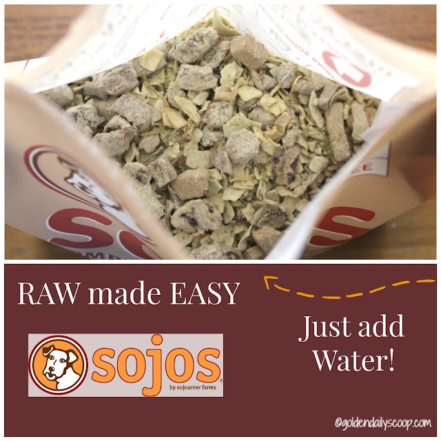 Sojos complete goat recipe raw dog good diet