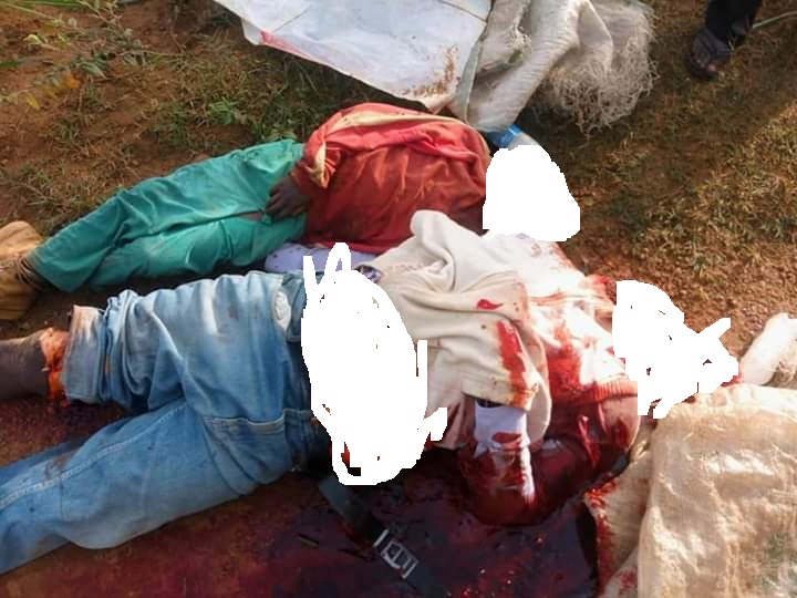 Disturbing Photos: Father, 7-Year-Old Son Beheaded, Pregnant Woman Slaughtered By Suspected Fulani Herdsmen In Plateau State