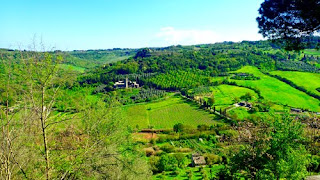 Beautiful Umbrian Countryside Italy