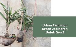 Urban Farming: Green Job Keren Untuk Gen Z
