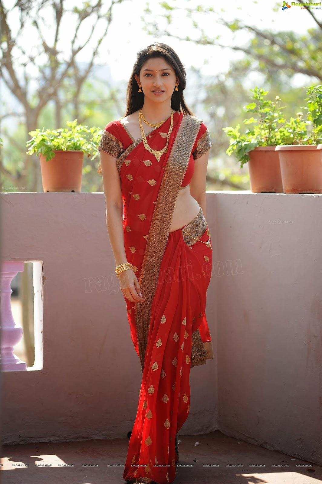 Actress Tanvi Vyas Hot Saree Side View Navel Photos -4942