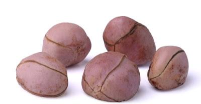 kolanut export