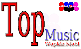 TopMusic Wapkiz Theme Review