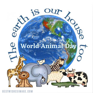 Animal day images 2021