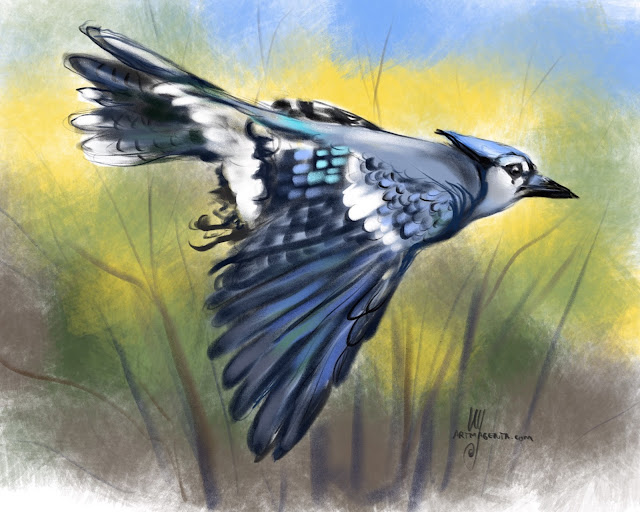 Blue Jay bird painting by Artmagenta