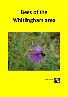 Whitlingham Bee guide