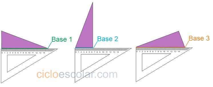 bases del triángulo desafíos matemáticos quinto grado contestado
