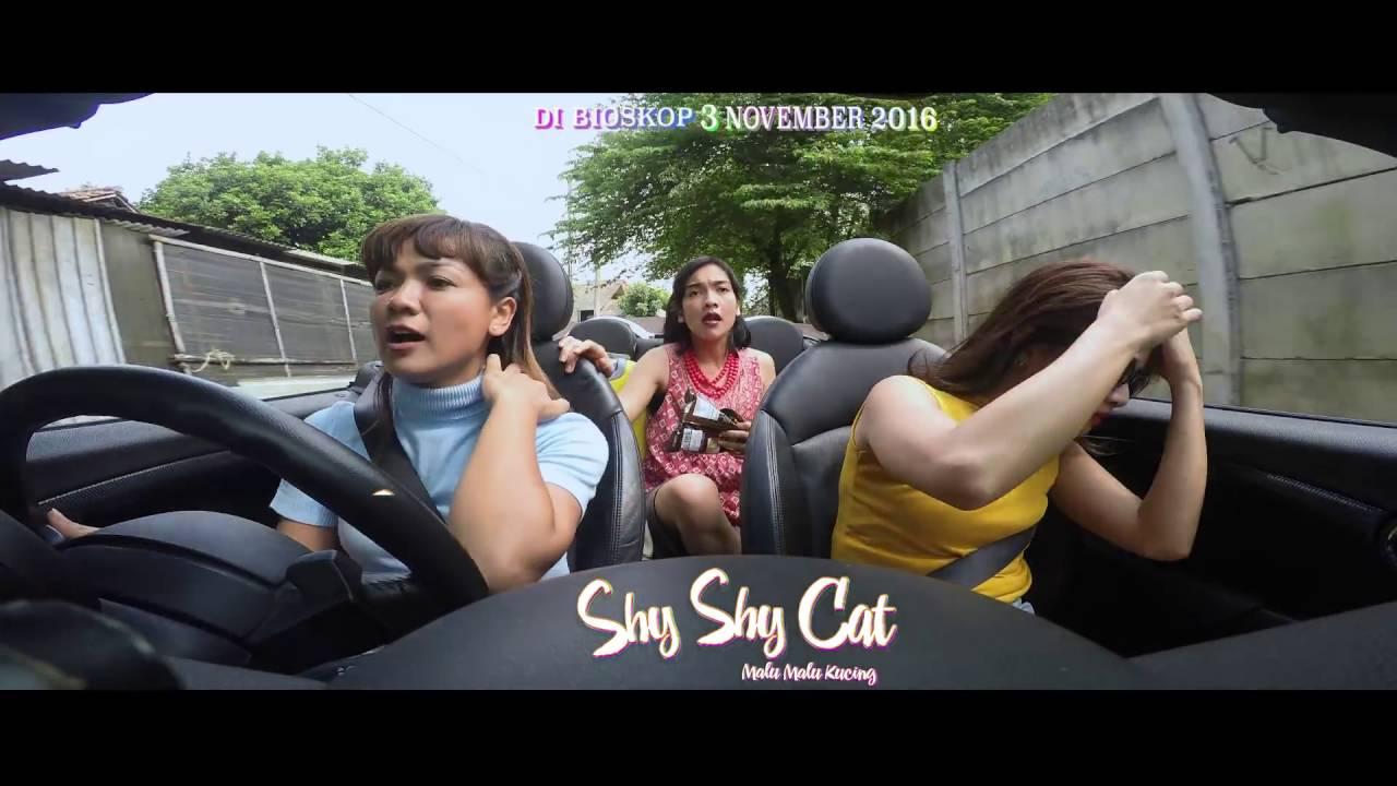Download Film Shy Shy Cat Full Movie 2016