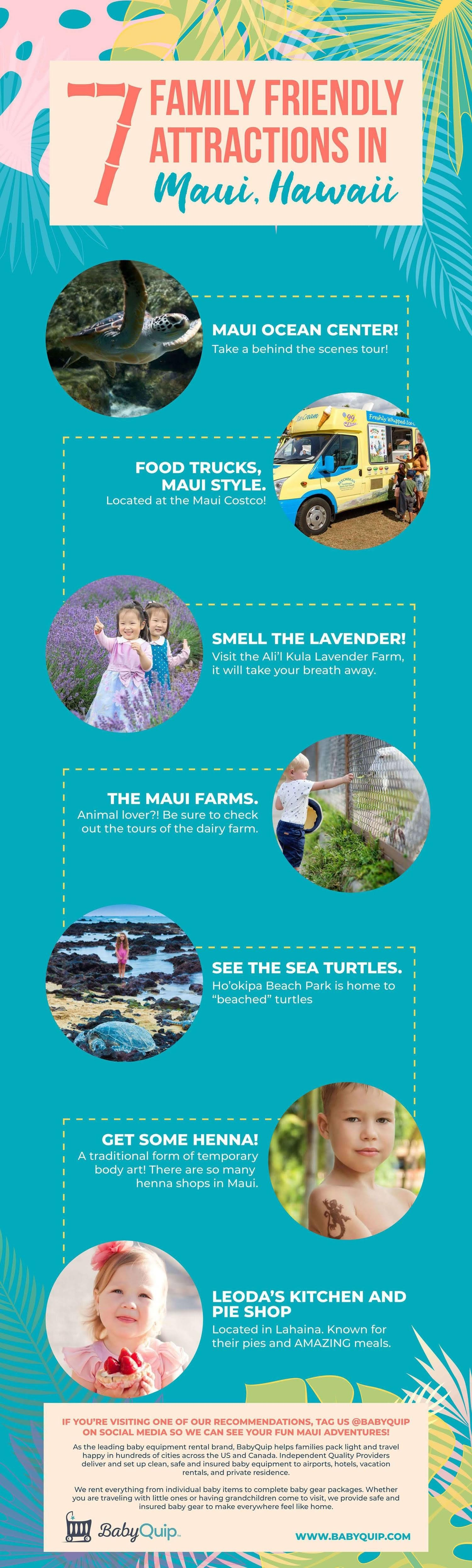 7 Family Friendly Attractions in Maui, Hawaii #infographic #infographic