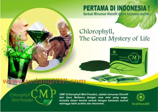 CMP - Classic Mulberry Powder