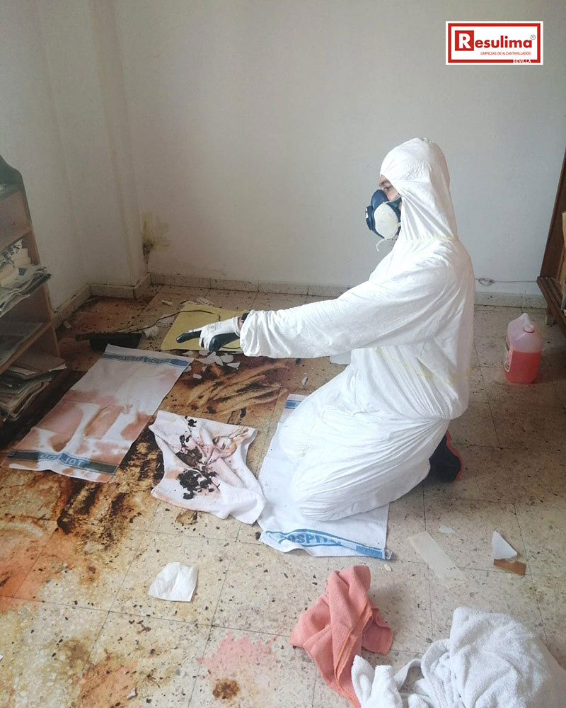 Limpieza y desinfección especial por fallecimiento en Sevilla
