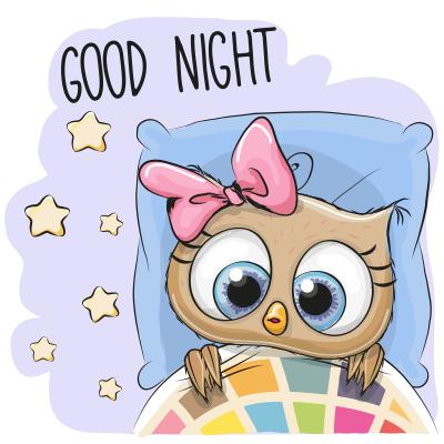 Nighty Night Owl