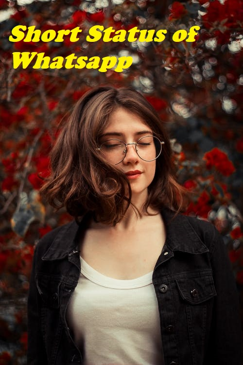 Short Status of Whatsapp