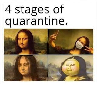 4 stages of quarantine