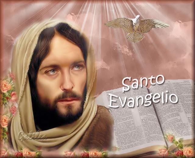 Corazón De Jesús En Vos Confío Santo Evangelio 23 De Octubre 2019