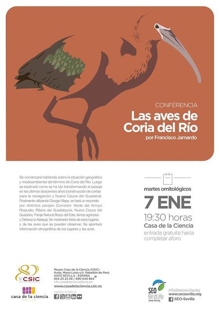 Conferencia: Las aves de Coria del Río. Por Francisco Jamardo, 7 de Enero 2020. Grupo Local SEO-Sevilla.