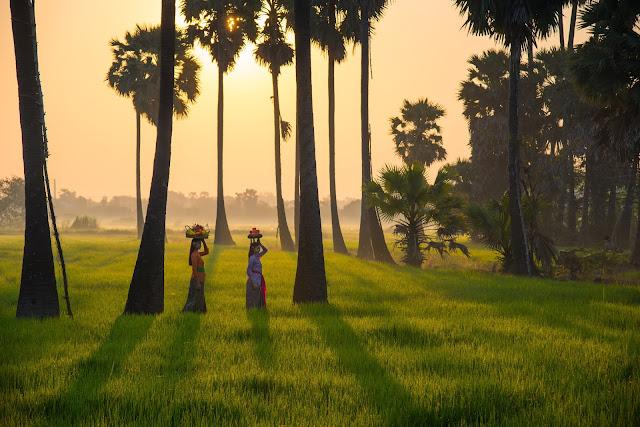 Budaya Lokal Indonesia