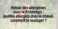 Retour des allergènes avec le Printemps : quelles allergies chez le cheval, comment le soulager ?