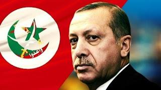السيناريوهات المحتملة لـ«إخوان تركيا» بعد محاولات التقارب من أنقرة للقاهرة