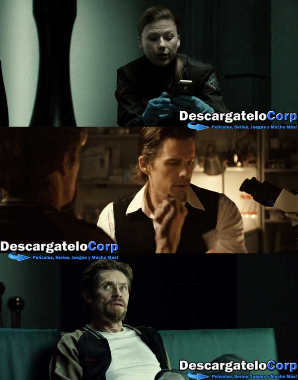 Descargar Daybreakers HD 1080p Latino