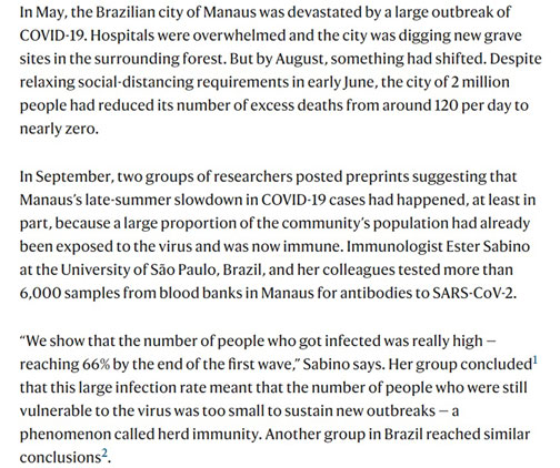The herd immunity situation in Brazil (Source: Christie Aschwanden, Nature, Oct 21, 2020)