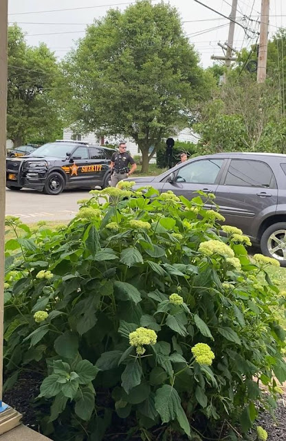 """0 Elderly neighbor calls cops on 9 year old for chalking Black Lives Matter outside her own house%25281%2529 - Shameful! Aged girl calls police on 9-year outdated lady after she wrote """"Black Lives Matter"""" outdoors her dwelling"""