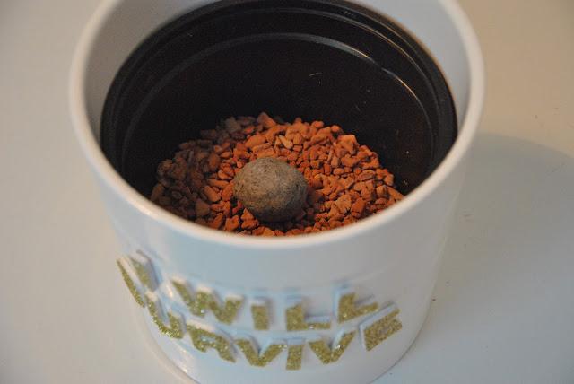 Eingepflanzt FrøBombe von TagTomat