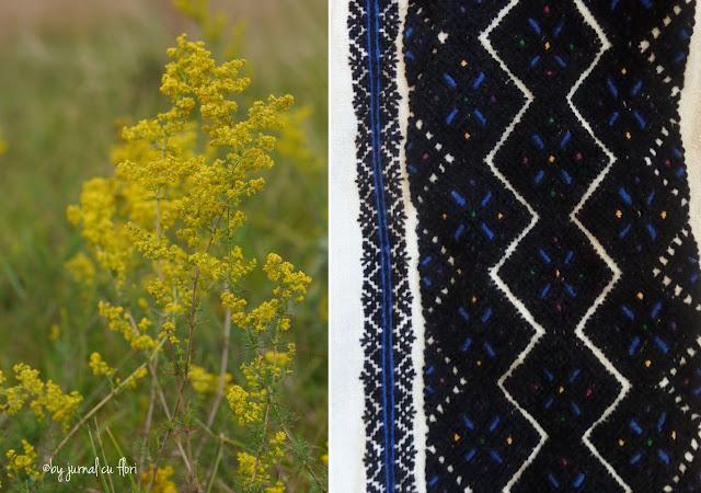 flori de sanziene galbene si model broderie ie camasa padureni batraneasca neagra,