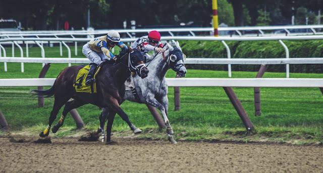 Horses racing: Photo by Noah Silliman on Unsplash