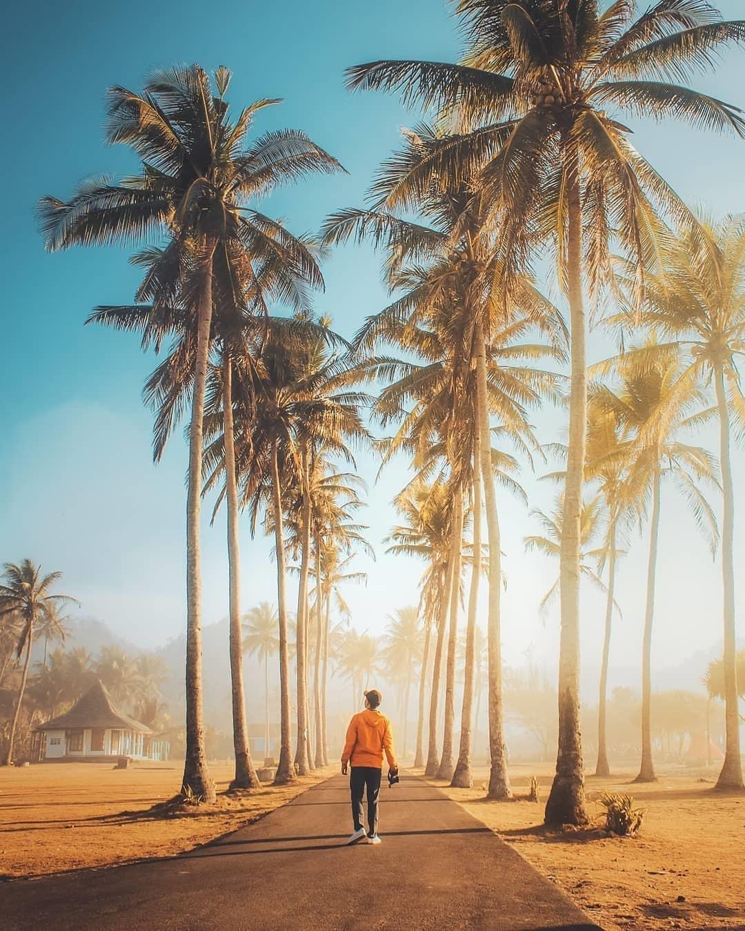 Jalan Menuju Pantai Srau Pacitan