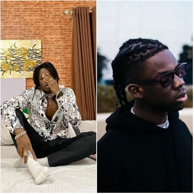 FireBoy-and-Rema-are-really-doing-well-in-the-industry