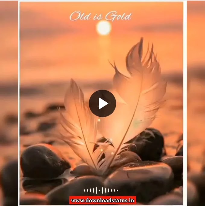 Old Is Gold Whatsapp Status Video Download love Status Video
